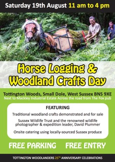 Horse Logging A5 Flyer